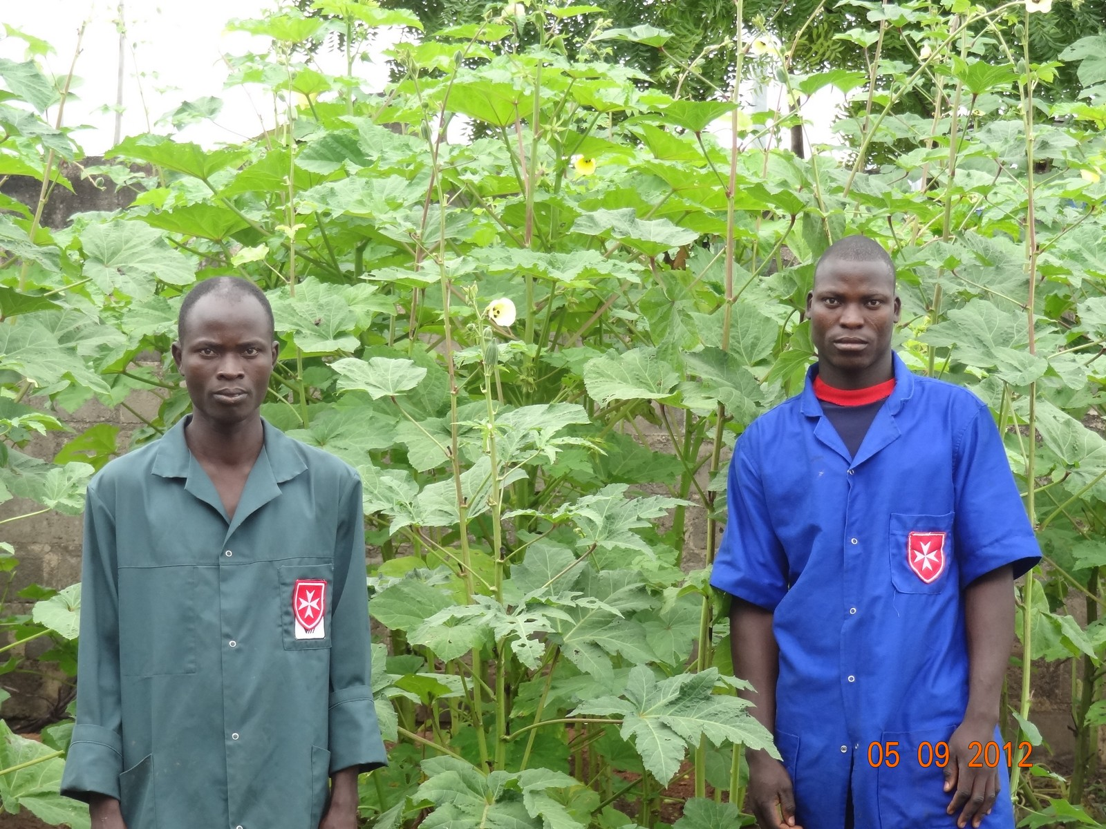 Nutritional Gardens, Togo and Benin